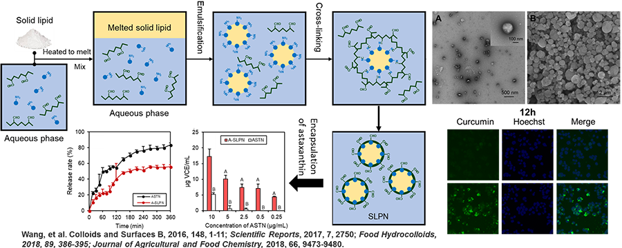 Solid-lipid polymer nanoparticles